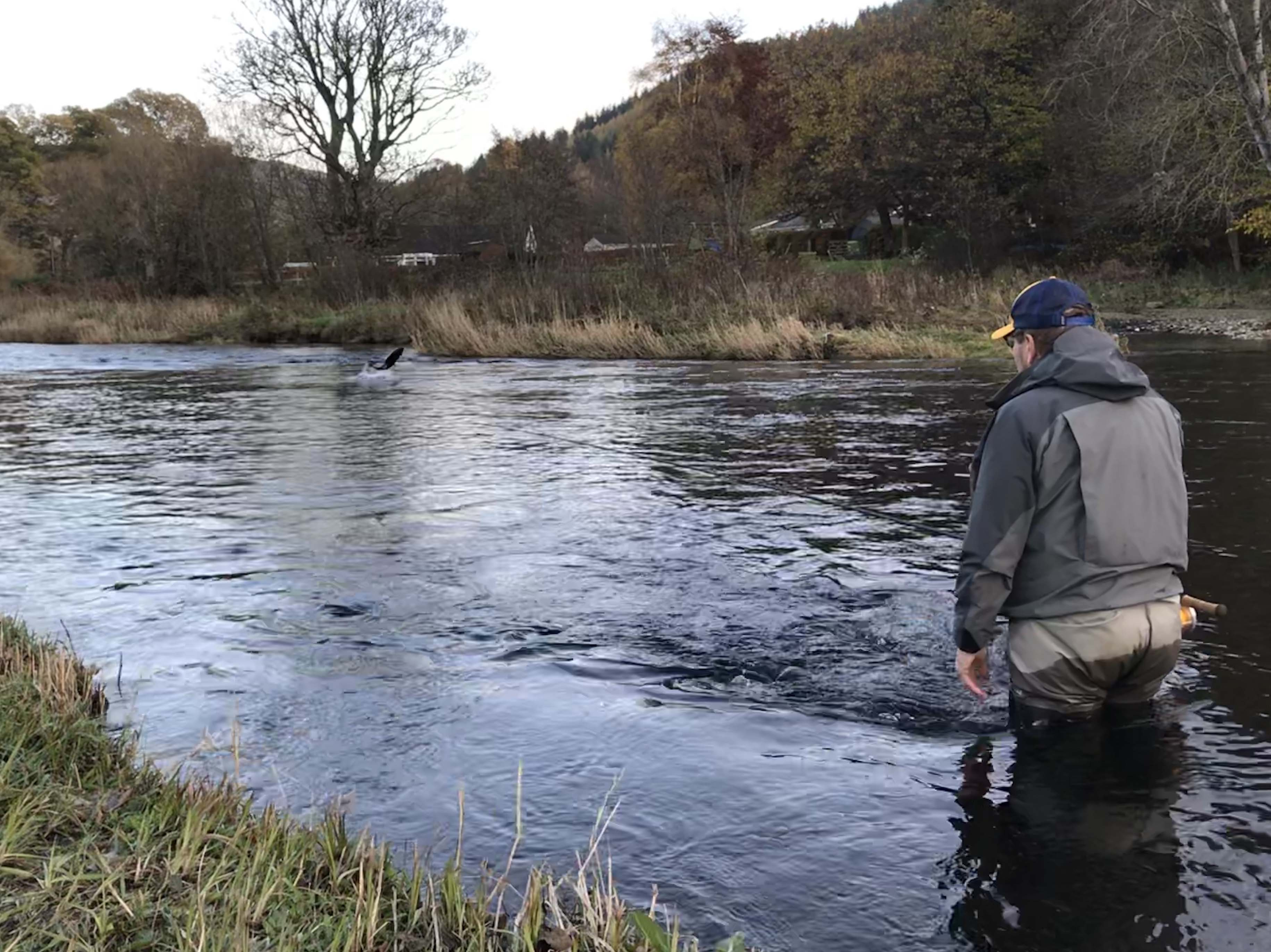 skotlanti scotland skottland tweed tweedjoki perhokalastus flyfishing flugfiske lohi salmon lax Fishmaster kalastus perhokalastusmatka kalastusmatka