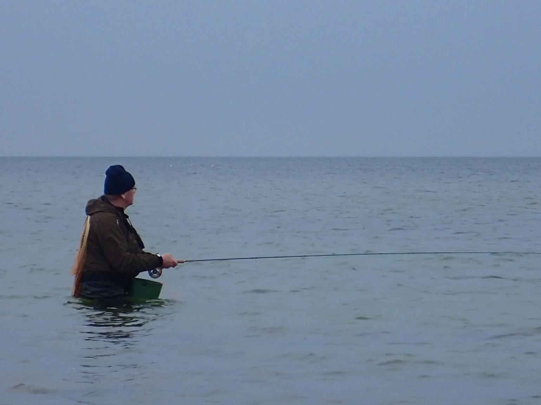 gotlanti gotland ruotsi sweden sverige seatrout havsöring meritaimen perhokalastus flyfishing flugfiske fluefiske seatroutflyfishing perhokalastusmatka kalastus kalastusmatka fishmaster globalfishing