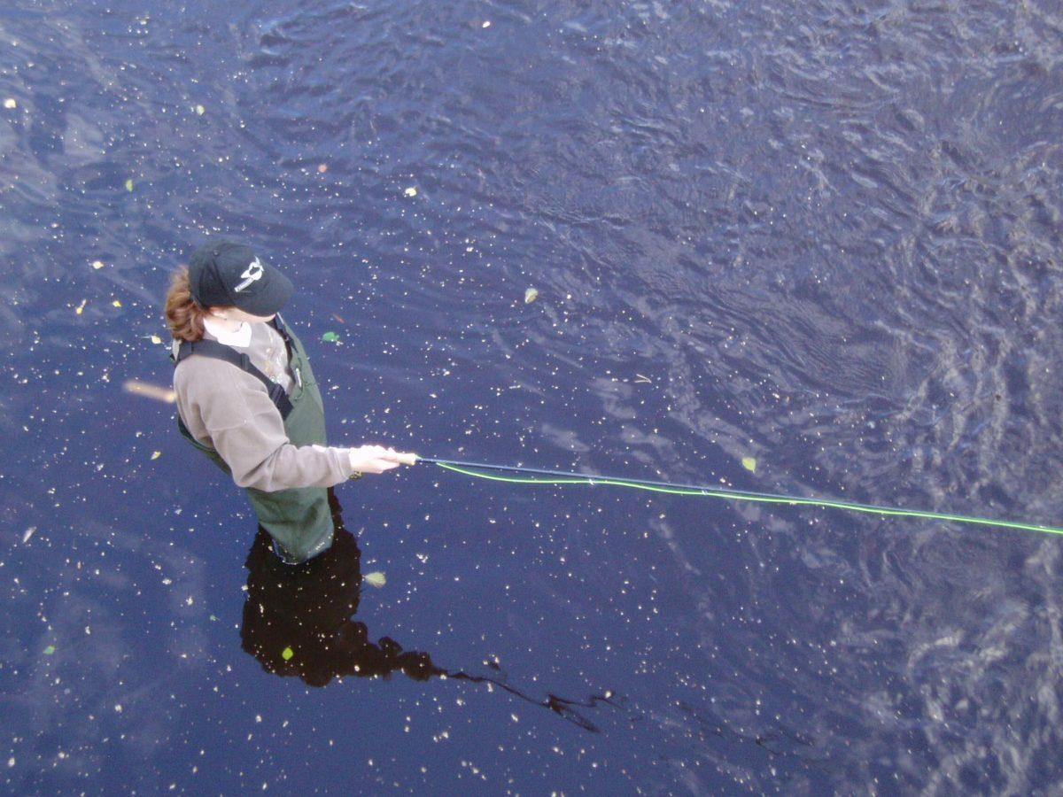 suomi finland merikarvia rivermerikarvia seatrout havsöring meritaimen kirjolohi raoinbowtrout regnbågsöring perhokalastus flyfishing flugfiske perhokalastusmatka kalastus kalastusmatka kalamatka kalastusretki fishmaster globalfishing