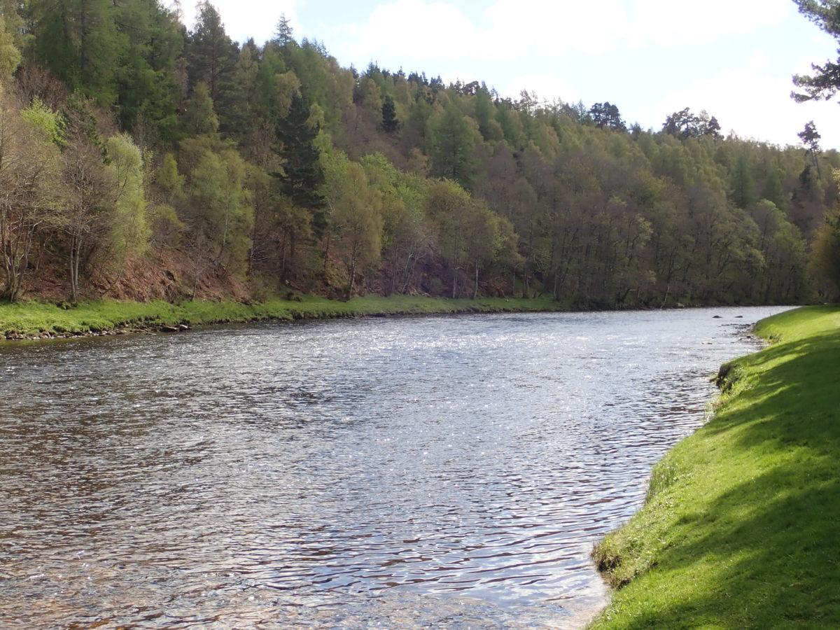 spey speyriver speyjoki scotland skotlanti skottland salmon springer lohi lax flyfishing perhokalastus flugfiske