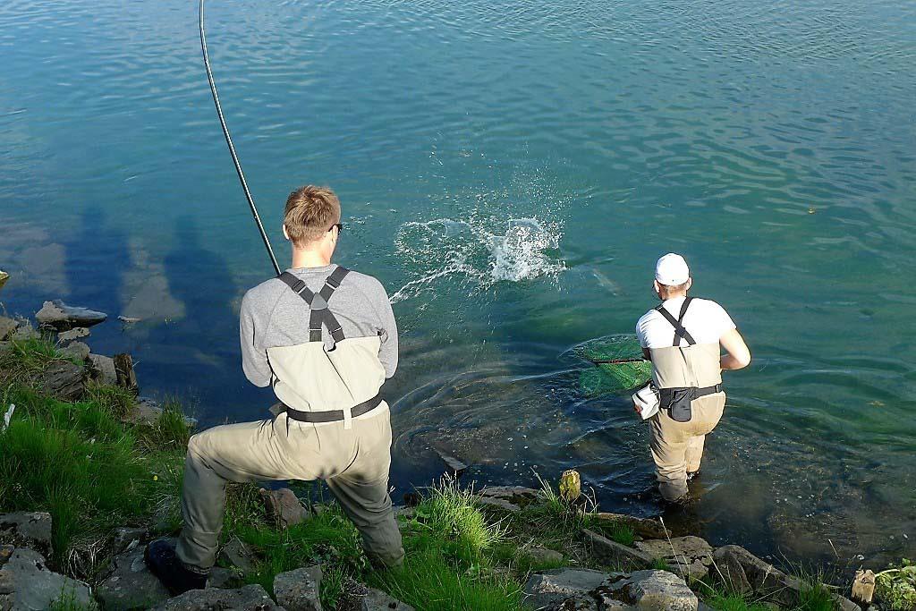 westranga iceland island islanti salmon laks lax lohi perhokalastus flyfishing flugfiske fluefiske salmonflyfishing perhokalastusmatka kalastus kalastusmatka fishmaster globalfishing