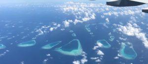 malediivit maldives maldiverna perhokalastus flyfishing flugfiske gt gianttrevally bluefintrevally