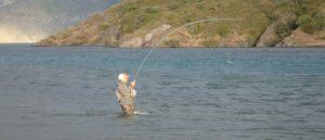 chile rioserrano chinook chinooksalmon kingsalmon kuningaslohi kungslax perhokalastus flyfishing flugfiske fluefiske perhokalastusmatka kalastus kalastusmatka fishmaster globalfishing