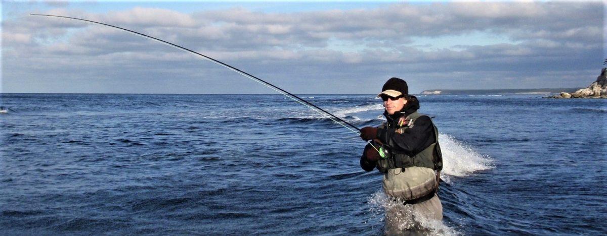 gotlanti gotland ruotsi sweden sverige seatrout havsöring meritaimen perhokalastus flyfishing flugfiske fluefiske setroutflyfishing kalastus kalastusmatka fishmaster globalfishing